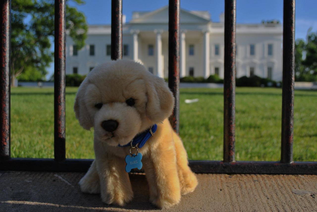 Karel at the White House -- CS for All.
