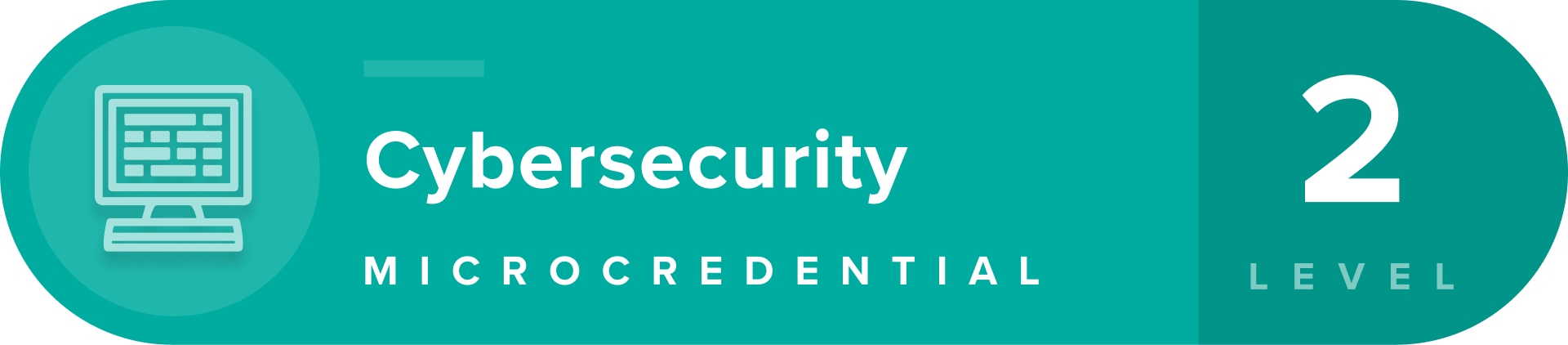 Cybersecurity microcredentials level 2 badge